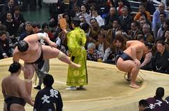 日馬富士 画像9