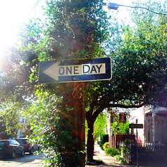 One Day New Orleans (Exile on Ontario St) Tags: road new trees urban streetart green sign way square one graffiti cool orleans louisiana day traffic neworleans vert oneday urbanart route direction arbres squareformat letter greenery roadsign oneway arrow nola signalisation avenue circulation rue trafficsign panneau affiche lettre trafic urbain louisiane flche hijacked panneauroutier panneaudesignalisation