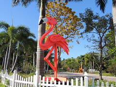 DSCN8460 (Dale_Wiley) Tags: art metal flamingo statues horseshoes