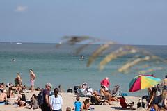 IMG_0074 (Mike H Photography) Tags: sea sun beach relax joy sunny dania