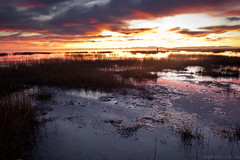 Lake elesmere