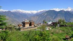 Bhimakali Temple,Sarahan (mala singh) Tags: india mountains temple shimla spring himachalpradesh sarahan himlayas bhimakali