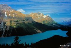 Canada: Banff National Park: Peyto Lake (mariofalcetti) Tags: mountain lake canada water montagne landscape lago acqua paesaggio banffnationalpark peytolake