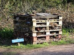 Bug Hotel (Wildlife Terry) Tags: naturereserve silverdale aonb rspb leightonmoss sssi wildlifenatureamateurphotography