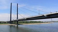 mal D'dorf zwischendurch 2a/5 (AnnAbulf) Tags: fiume nrw reno dsseldorf rhein nordrheinwestfalen flus renaniasettentrionalevestfalia