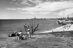 """This is my letter to the world"" E. Dickinson (Herminio.) Tags: sea costa coast mar mediterranean mediterraneo sunday domingo diumenge mediterrani montgat"