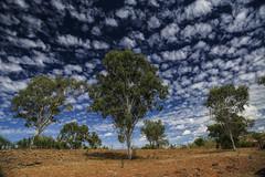 Sambo Rock hole- (erglis_m (Mick)) Tags: trees sky clouds canon landscape nt northernterritory reddirt landscapephotography theoutback theaustralianoutback canoneos5dmkiii samborockhole macdonaldyards