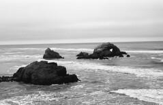 Seal Rocks, Lands End, SF (bclook) Tags: sanfrancisco seascape monochrome landscape noiretblanc schwarzweiss leicam6classic summicron50mmf2 filmisnotdead fujineopanacros100 istillshootfilm bwfp