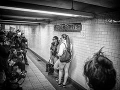 Pantless Sunday 14. (rockerlan) Tags: new york nyc people urban underground subway photography photo pants no sunday olympus pantless lifestyles em5