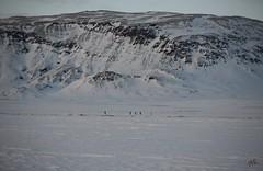 The old vulcano (arnthorr) Tags: winter sun tree ice volcano frozen iceland frost ar vulcano ganga tr islande ragnar brfell starfilter vetur sl eldfjall frosen bstaur s arnr sigmar slei vatni fjallaski gnguski ggur arnthorr arnrragnarsson arnthorragnarsson brfellgrmsnesi bauluvatn gamalteldfjall iceslade sigmarogragnar fjallaskahpur