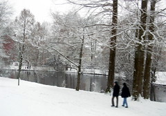 Stieghorst park tram lines Bielefeld Germany 26th January 2014 snow  26-01-2014 14-29-13 (dennoir) Tags: park snow lines germany january tram bielefeld 26th 2014 stieghorst 26012014 1429018