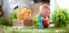 Peanuts. (Thai Toy Photographer) Tags: lighting brown anime tree cute grass set garden studio toys model box cartoon peanuts towel depthoffield sally snoopy figure figurine figures mcdonald happymeal toyphotography sallybrown linusvanpelt
