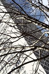 L'inverno in periferia (Simenza) Tags: paris parigi 13eme smcpentax55mmkf18