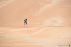 3-Oman-Desert-Marathon-Day-6_6712