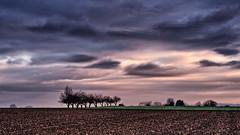 My daily Route III (nazim1505) Tags: 2 germany landscape landscapes mark olympus ii landschaft zuiko hdr 45mm ludwigsburg omd landschaften markii mark2 em5 easyhdr benningen easyhdr3 em5ii em5markii