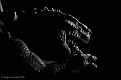godzilla1024web (jorgerg770) Tags: blackandwhite byn dark nikon fear flash godzilla terror miedo depredador d90 18105vr