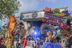 AURORA DOS CARNAVAIS 2016 (Arthur Perruci) Tags: brasil nikon carnaval recife pernambuco nordeste previa tamronspaf1750mmf28xrdiiildasphericalif frenteafrente d5000 nikond5000 arthurperruci carnaval2016