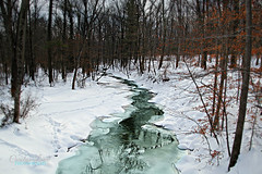 Winter in the Woods (socalgal_64) Tags: park trees winter snow ice nature forest river landscape woods stream natural pennsylvania snowy reserve pa icy snowfall lehighvalley waterscape nazareth jacobsburg jacobsburgstatepark carolynlandi