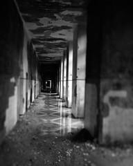Black Sanatorium (Skin Soul) Tags: square squareformat iphoneography instagramapp uploaded:by=instagram
