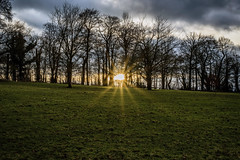 Last Light (Steve Millward) Tags: winter sunset sky cloud cold tree nature field grass 50mm interesting nikon raw outdoor perspective sharp d750 sunburst february fullframe nikkor fx primelens imagequality fixedfocallength stevemillward