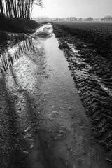 087 Rene Rosmolen _IGP039kl (Foto-Groep Advies-site) Tags: leica winter doorn sneeuw hilversum harderwijk wedstrijd amersfoort dlux ijs bunnik winterfoto fotowedstrijd strik fotogroep