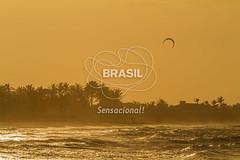 NE_DeltaParnaiba0400 (Visit Brasil) Tags: pordosol praia horizontal brasil natureza céu kitesurf árvore esporte nordeste ecoturismo vegetação piauí externa paraquedas silhuetas luiscorrea comgente diurna praiadoscoqueiros brasil|nordeste brasil|nordeste|piauí|luiscorrea brasil|nordeste|piauí|luiscorrea|praiadoscoqueiros quisoquecabana brasil|nordeste|piauí