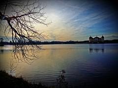 Late afternoon, and a fantastic view (Tobi_2008) Tags: sky water germany deutschland pond wasser ast saxony himmel ciel sachsen teich allemagne germania zweige moritzburg diamondclassphotographer