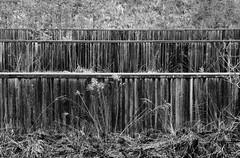 Ehemalige Schiebahn der franzsischen Armee in Tbingen  Old shooting range of french army in Tbingen (Objektkontrast) Tags: tuebingen tbingen badenwrttemberg franzsischearmeeintbingen alteschiesbahn
