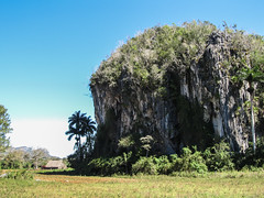 "Parc National de Viñales <a style=""margin-left:10px; font-size:0.8em;"" href=""http://www.flickr.com/photos/127723101@N04/25059340149/"" target=""_blank"">@flickr</a>"