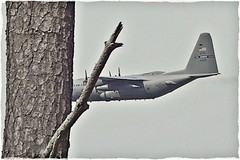 Low Flying C-130 Hercules / Dobbins ARB (steveartist) Tags: aircraft airplanes pines pinetrees militaryaircraft cargoaircraft lockheedc130hercules stevefrenkel phototoaster sonydscwx220