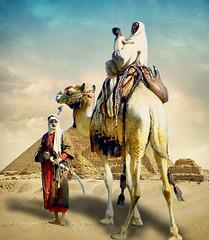 Bedouin in the desert (jaci XIII) Tags: family people sand pessoas couple desert pyramid areia famlia casal deserto bedouin pirmide beduno