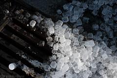 49/52 cubes (Karen Burgoyne) Tags: ice aberdeen icecubes cubes 52weeks 4952 52weekchallenge