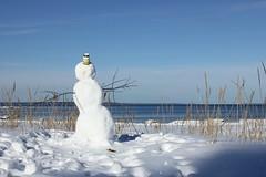 Snögubben-The Snowman (Annica Spjuth) Tags: vatt snögubbe sandbankarna fotosondag fs160228