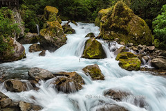 Cascade, Fjordlands National Park (chasingthelight10) Tags: travel newzealand mountains nature photography landscapes countryside events lakes places things vistas teanau creeks mtaspiringnationalpark routeburntract