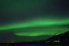 Dreamers (FufBea) Tags: cielo sky nordlys iceland islanda aurora northernlights auroraborealis stars stelle notte night starrynight