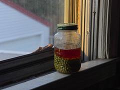 Peas 'n' Ale (Paul Henegan) Tags: blur masonjar windowsill goldenhour earlymorninglight driedpeas sixpointresinale