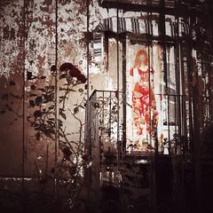 Imprisoned (Tango&Cash) Tags: flower collage manipulated balcony figurine ipad