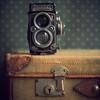 rolleiflex (donna leitch) Tags: camera stilllife macro texture rolleiflex vintage 100mm suitcase flypaper 5dmkiii donnaleitch