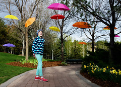 For a Rainy Day (JasonCameron) Tags: thanksgiving flowers cute colors girl festival point utah kid spring colorful path tulip umbrellas