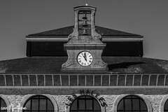 Les Halles - Breizh/Finistre (LVAPC - Tifenn Ponsson) Tags: bretagne concarneau halles mouette finistre cloches