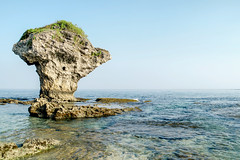 Flower Vase Rock (H.B. Sim) Tags: ocean blue sea nature water coral rock landscape outdoors island coast nikon outdoor tide taiwan shore tropical 台灣 clearwater 小琉球 coralisland xiaoliuqiu taiwanroc hbsim nikond3300 d3300 littleliuqiuisland
