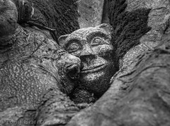 Happy Head. (Tony Brierton) Tags: sculpture tree face treehugger tinternabbey cowexford