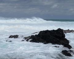 DSC_5315 e5 (J Telljohann) Tags: hawaii maui hookipa