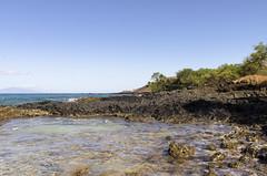South Shore Maui (rschnaible) Tags: ocean sea usa seascape beach water rock landscape hawaii us day tour pacific south sightseeing rocky sunny maui tourist clear shore