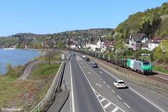 Fret in Linz am Rhein (D), 20-04-2016 (PeterBrabant) Tags: linz prima akiem 37044