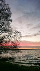 PSX_20160324_201520 (Sharkomat) Tags: see sonnenuntergang sony himmel wolken z z3 rendsburg eckernförde compact schleswigholstein norddeutschland exmor z3c wittensee xperia bünsdorf