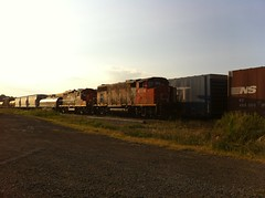 Flats (wileyboy93) Tags: canadiannational cnrail extendos