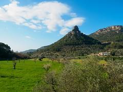 Mallorca (Burnett0305) Tags: spain olympus mallorca spanien majorca balearicislands 1240 balearischeinseln mzuiko olympusomdem5markii mzuikodigitaled1240mm128pro
