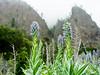 Caldera de Taburiente (RichardWesner) Tags: nature islands la nationalpark pentax sony foggy sunny caldera canary palma 645z a7rii