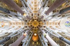Sagrada Familia (amoeboid) Tags: barcelona familia architecture spain symmetry gaudi sagradafamilia sagrada canon1022mm canon60d